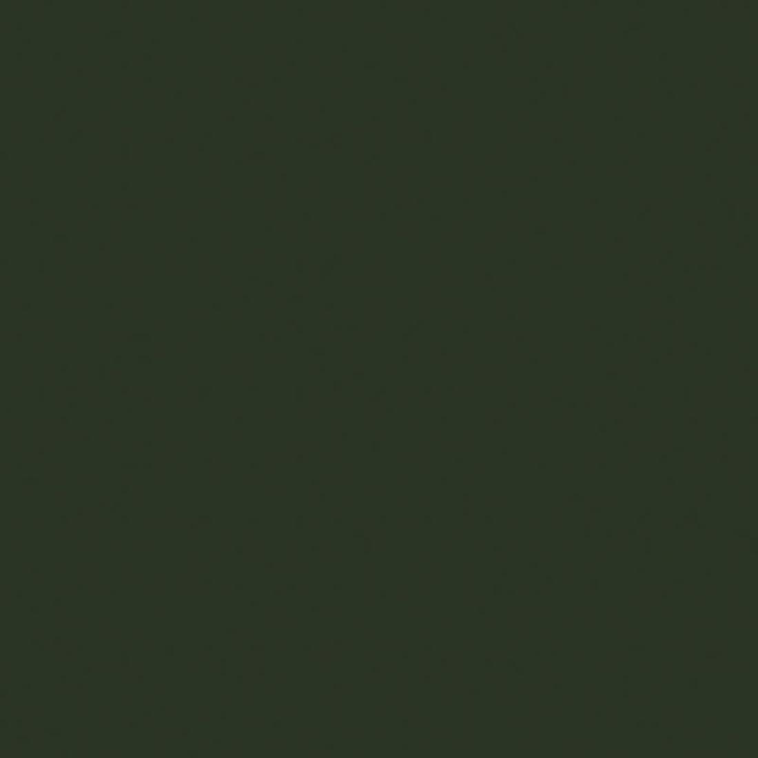 Trespa® Izeon® HPL Plaat EZ Groen RAL6009 Enkelzijdig folie 3050x1530x6mm