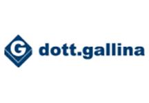 Gallina Logo